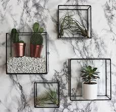 Wall Shelves Ideas by Best 25 Glass Wall Shelves Ideas On Pinterest Green Home