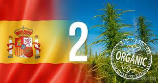 Picture Of Spain Flag Industrieller Hanf Biologischer Anbau In Spanien Teil Ii