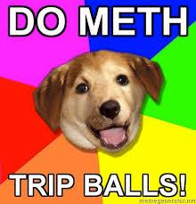 Advice Dog Meme Generator - image 24553 advice dog know your meme