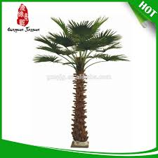 palm trees canada palm trees canada suppliers and manufacturers
