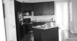 Kitchen Corner Cabinets Options Cabinet Attractive Corner Cabinet Impressive How To Build