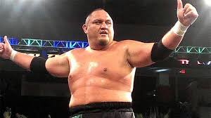 Are They Tough Enough Joe - joe wants to face brock lesnar wwe interested in roh star tough
