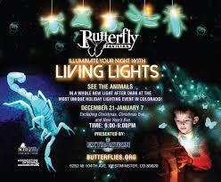 living lights butterfly pavilion