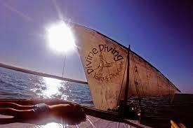 divine diving yoga u0026 dive center nungwi tanzania divebooker com