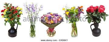 Flowers In Vases Images Wild Flowers In Jug On White Background Stock Photos U0026 Wild