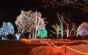 when does the lights at the toledo zoo start toledo zoo lights before christmas caroling high vocal music