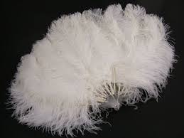 feather fans ostrich feather fans dyed costume feathers