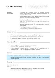 28 1 curriculum vitae template best 25 template cv ideas on