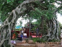 2014 hotsale artificial banyan tree in factory price ficus