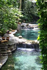 Natural Swimming Pool Omg This Is