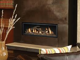 Contemporary Gas Fireplace Insert by Contemporary Gas Santa Cruz Tub And Fireplace
