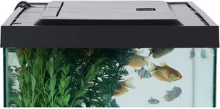 55 gallon aquarium light 55 gallon aquarium lighting aquarium pinterest 55 gallon