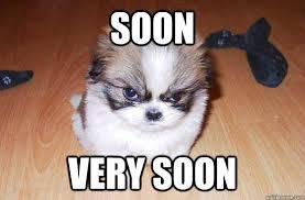 Soon Meme - soon very soon soon dog quickmeme