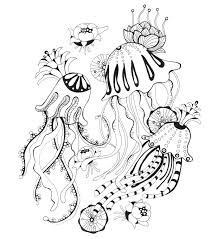 botanical wonderland coloring book joann