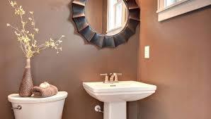 idea for small bathrooms astounding design ideas for small bathrooms derekhansen me