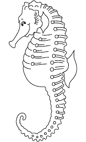 65 sea creature templates printable crafts u0026 colouring pages