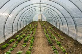 hoop house plans free the best you u0027ll find on the internet