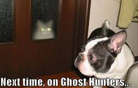 36 next time on ghost hunters meme pmslweb