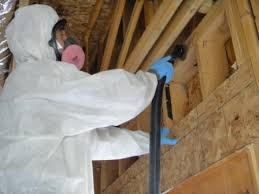 mold remediation ultrasteam cleaning in durango co