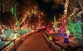 this nevada garden celebrates the holidays by wrapping cacti in