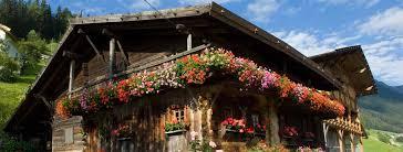 geranien balkon königsrainer impressum