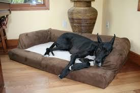 overstuffed luxury sofa dog bed beautiful stylish ideas fancy pet