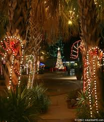 cost of christmas lights christmas lights before christmas toledo zoo coupons tickets for