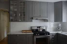Kitchen Cabinets Ikea Ikea Kitchen Cabinet Colors Fancy Under Cabinet Light Simple