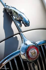 Dodge Truck Ram Head Hood Ornament - 466 best vintage hood ornaments images on pinterest hood