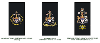 Dimensions Of Canadian Flag Royal Canadian Navy National Defence Canadian Armed Forces