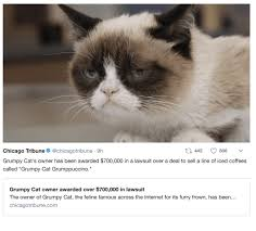 Frown Cat Meme - 25 best memes about grumpy cat death grumpy cat death memes