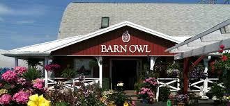 The Barn Owl Carol Stream Organic Fall Seedling Sale The Gardenworks Project
