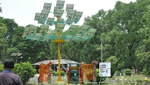 this indian scientist grows solar panels on trees