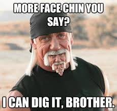 Can You Dig It Meme - more face chin you say i can dig it brother hulk hogan with a