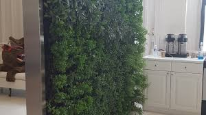 grundys plantscaping green walls