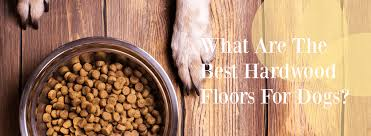 what are the best hardwood floors for dogs pet flooring