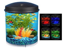 Aquarium For Home Decoration Amazon Com Kollercraft 2 Gallon 360 View Aquarium With Internal