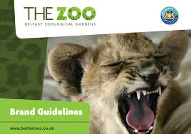 Best 25 Brand Book Examples Zoo Brand Guidelines By Brand Books Issuu