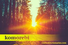 Another Word For Comfort 15 Japanese Words That English Needs Oxfordwords Blog