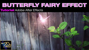 ip tuts particle butterfly fairy effect download in adobe