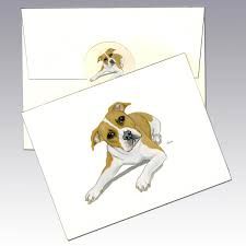 belgian sheepdog nc pit bull note cards