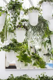 Indoor Garden Design 5 Easy Indoor Garden Ideas Small Space Ideas