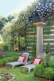Poolanlagen Im Garten 39 Besten Lawn Thyme Bilder Auf Pinterest Thymus Serpyllum