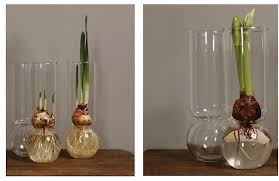 Bud Vase Wholesale 10 Easy Pieces Bulb Vases Gardenista
