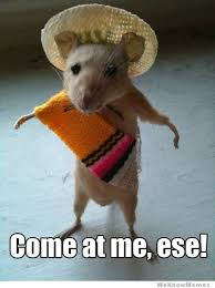 Come At Me Meme - come at me ese weknowmemes