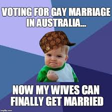 Same Sex Marriage Meme - success kid meme imgflip