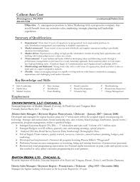 Good Sales Resume Examples by 100 Sales Experience Resume Example Resume Sales Associate