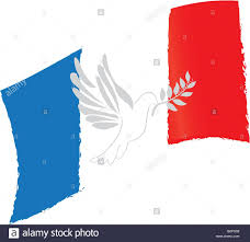French Flag Pictures Isolated French Flag Pigeon Conceptual Peace Vector