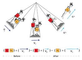 linear momentum circus pbs physical science