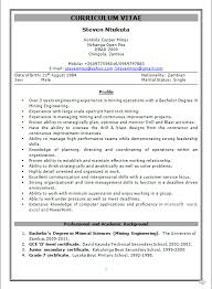4 Years Experience Resume An Analysis Of Particle Swarm Optimizers Phd Thesis Book Citing